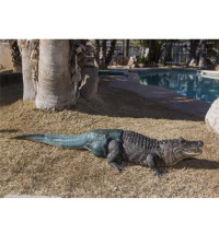The World's First Alligator With A Prosthetic Tail