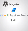 Google Page Speed Service Integration with Wordpress