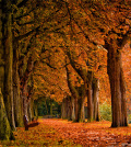 What is the fall equinox